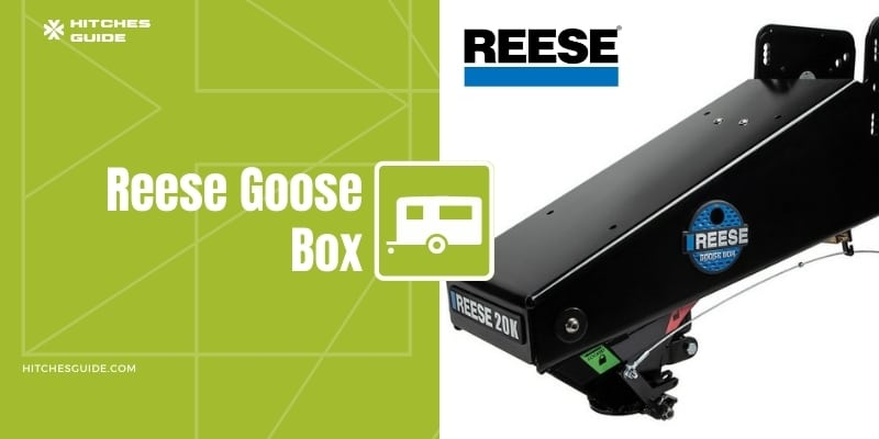 Reese Goose Box Reviews & Buying Guide
